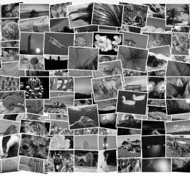 valokuvat studio helios raahe